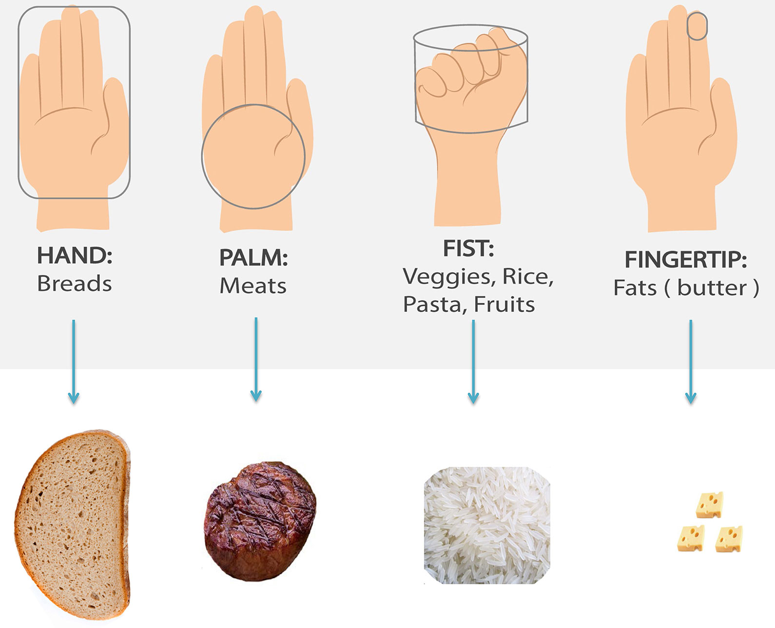 Portion sizes in relation to an adult hand